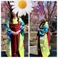 卒業袴の着付け - きもの沙羅