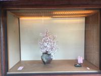 帰省の前に - 京都西陣 小さな暮らしから、田舎暮らしへぼちぼち・・・