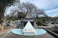 多磨霊園へ・つづき 2020年3月17日 - 暗 箱 夜 話 【弐 號】