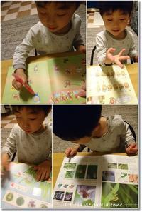 【3歳5ヶ月】こどもチャレンジ退会と自宅学習お試し&トランプで勉強 - 素敵な日々ログ+ la vie quotidienne +