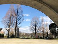 賑わう公園 - 白雪ばぁばのかんづめ