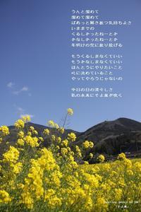 そよ風 - 陽だまりの詩