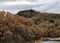 蜂倉山のカニの横這い - 七ツ森アーカイブ