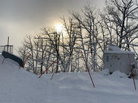 19-20シーズン Day16 ☆ この冬一番のパウダー祭り - Carmenの粉雪スキャット