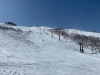 19-20シーズン Day21 ☆ 連休最終日は上から下まで降りたら終了祭り😭😭😭 - Carmenの粉雪スキャット