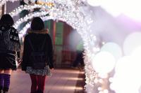 2011-12-18 - あるふぁ日記