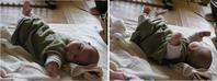 子育てエレジー - hibariの巣