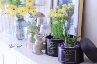 イースターカラーのアレンジ - Le vase*  diary 横浜元町の花教室