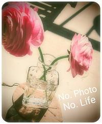 Heart     runrun ❗ - LAGOMな……PHOTO   LIFE !