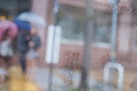 雨の一日 ~神戸編~ - 気の向くままに…
