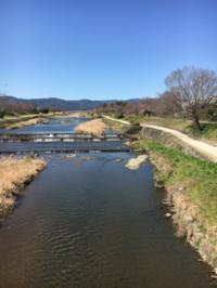 賀茂川を越えて - 京都西陣 小さな暮らしから、田舎暮らしへぼちぼち・・・
