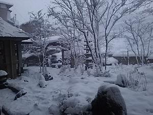 雪の日も、晴れの日も・・・ -