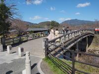 開花宣言後の京都<嵐山~北野~西陣> - y's 通信 ~季節を彩る風物詩~