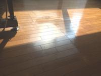 フローリング洗浄&ワックス - ハウスクリーニングのブログ