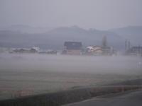 朝霧 - 三日おばさん