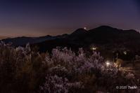 桃源郷夜明け - toshi の ならはまほろば