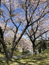 春期講習前半戦終了 - 寺子屋ブログ  by 唐人町寺子屋