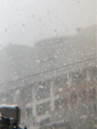 大雪! - 埼玉でのんびり暮らす