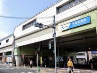 世田谷・千歳通りの桜並木 - 黄色い電車に乗せて…