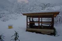 2020329雪が降りました。 - オーブン付き薪ストーブ kintoku直火工房。