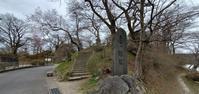 亀ヶ城公園の桜@福島県棚倉町 - 963-7837