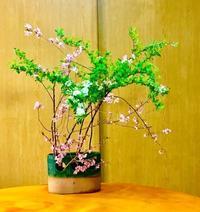 いけばな教室 - 東京いけばな日記 花と暮らしと生活と