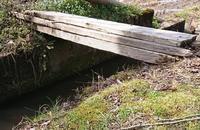 更新が滞ったことの釈明と春の訪れ - 金沢犀川温泉 川端の湯宿「滝亭」BLOG