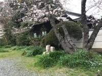 雲山荘から原点回帰 - 奈良 京都 松江。 国際文化観光都市  松江市議会議員 貴谷麻以  きたにまい