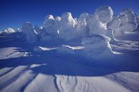 雪踊る - 人生山あり