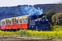 トロッコ列車2020-04-02更新 - 夕陽に魅せられて・・・