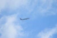 飛行機が飛んでいる青空が見たい。 - 平凡な日々の中で