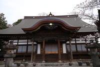 桜だより(14) 真光寺の桜① (2020/3/28撮影) - toshiさんのお気楽ブログ
