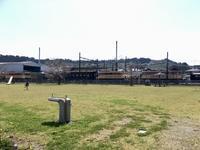 大井川鐵道の車両を眺めながら。 - 子どもと暮らしと鉄道と