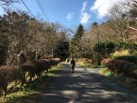 別荘の暮らし@在宅ワーク - 小粋な道草ブログ