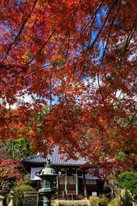 紅葉が彩る京都2019山崎聖天にて - 花景色-K.W.C. PhotoBlog