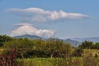 桜と吊るし雲 - 風とこだま