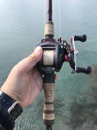 太PEラインで海釣りは可能か? - まめまめのバス釣り奮闘記