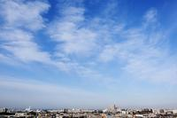 房状雲(巻雲) - 日々の風景