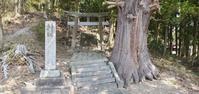 4月4日の桜巡り/菅原神社@福島県須賀川市 - 963-7837