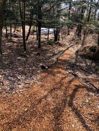 ウッドチップ - 三楽 3LUCK 造園設計・施工・管理 樹木樹勢診断・治療
