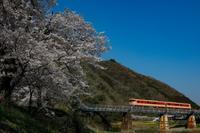 桜とキハ Vol.2 - My favorite Photo book