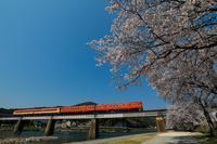 桜とキハ Vol.5 - My favorite Photo book
