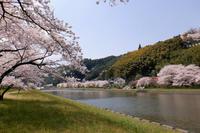 三刀屋川河川敷 - じじ & ばば の Photo blog