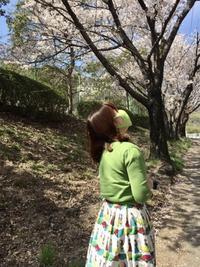 お花見散歩*⃝̣◌︎⑅⃝︎◍︎♡︎◌︎*⃝̥◍︎♡︎ - サロン・ド・ブロッサム(パーソナルカラー診断&骨格スタイル分析、パーソナルスタイリストin広島)