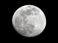 今夜の月 - 写真撮り隊の今日の一枚2