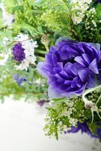 八重咲きアネモネと矢車菊のブーケ - お花に囲まれて