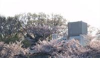 始業式 - hibariの巣