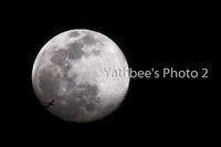 ~ 月と旅客機 ~2020.4.6 - Yathbee's Photo 2
