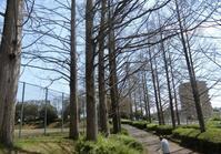 戸笠公園 - 緑区周辺そぞろ歩き