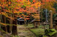 紅葉が彩る滋賀2019石段を彩る紅葉(石馬寺) - 花景色-K.W.C. PhotoBlog